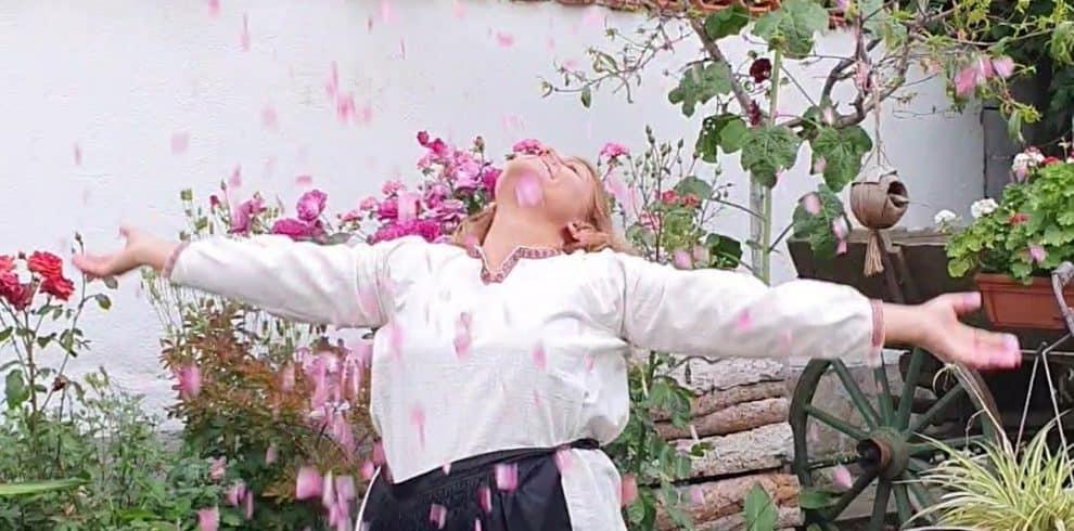 rose-petals-pavlina